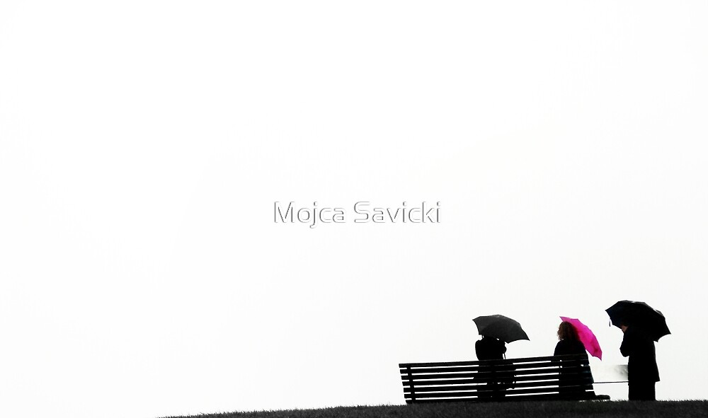 Viewpoint by Mojca Savicki