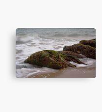 Sand, Sea, Seaweed Canvas Print