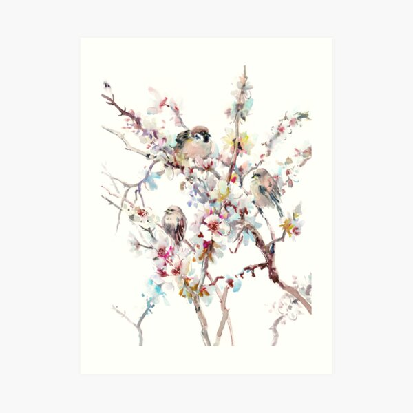 Sparrows And Apricot Blossom Art Print