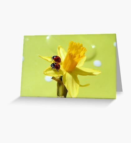 Sunny ladies Greeting Card