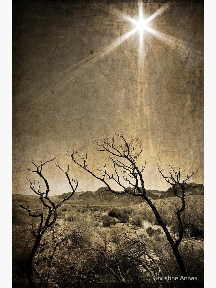 Under An Unforgiving Sun by 2Bricks