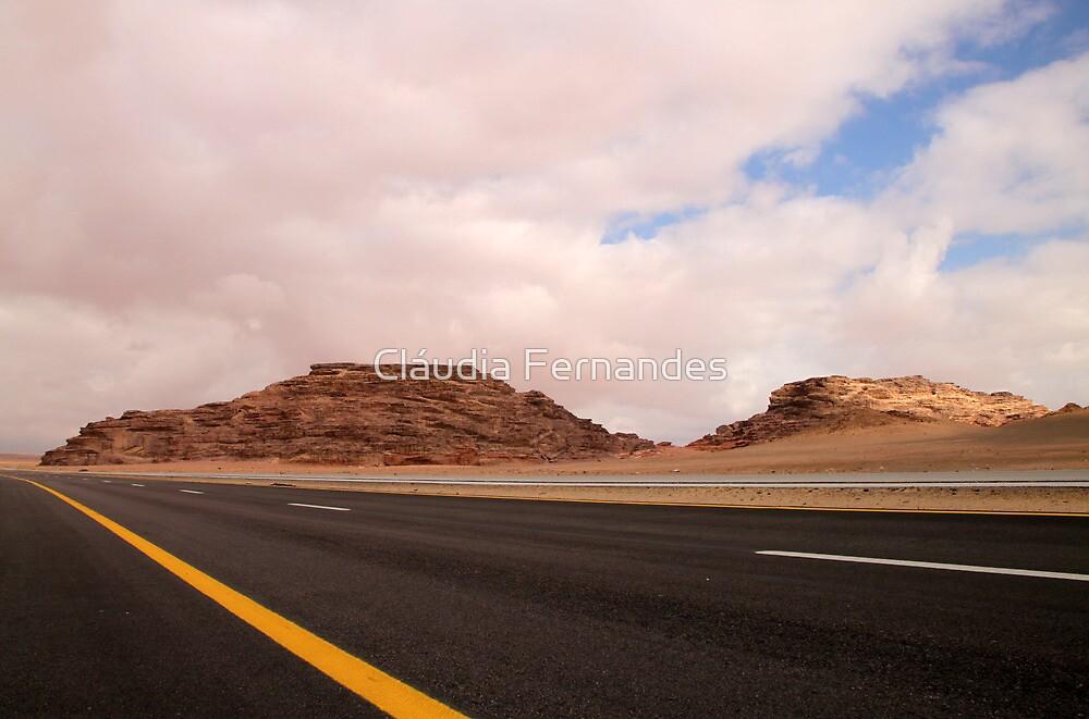 Desert road by Cláudia Fernandes