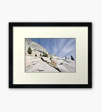 Olmsted Uprise Framed Print