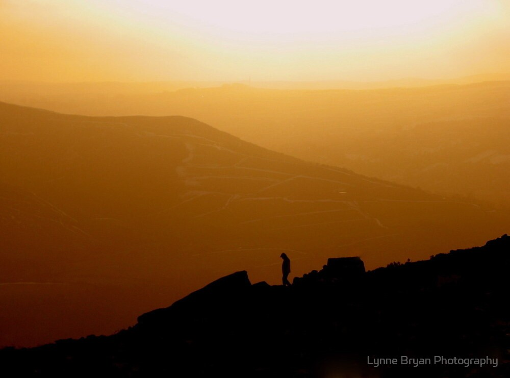 Alone In the World by Lynne Bryan Photography