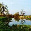 Grantchester Meadows 1 by artfulvistas