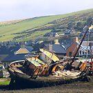 ship wreck by Edward  manley
