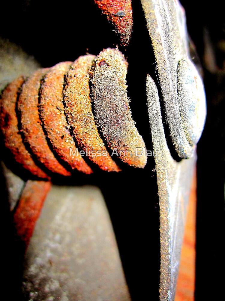 Rusted Hinge by Melissa Ann Blair