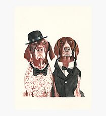 @ifitwags (The pointer brothers) Photographic Print