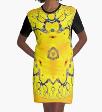 Rogues Gallery 45 Graphic T-Shirt Dress