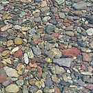 Montana Riverbed 3 by Robert Goulet