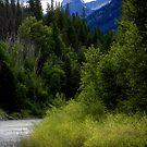 Glacier Country (Montana, USA) by rocamiadesign