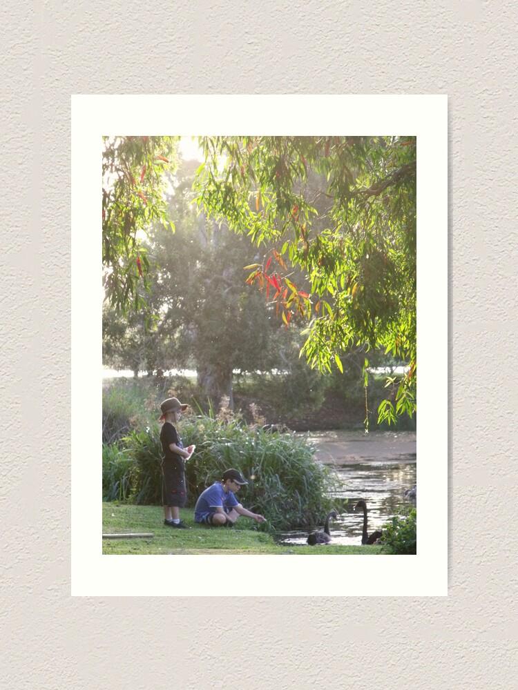"""Alternate view of """"Picnic  with nature-Baldwin swamp in Bundaberg"""" Art Print"""