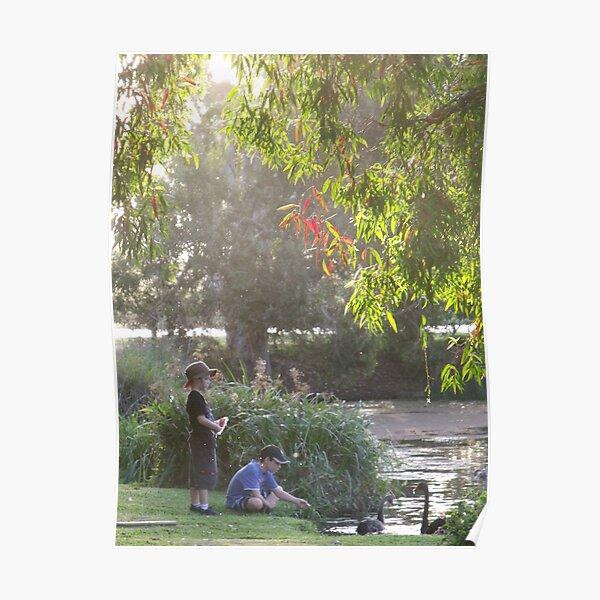 """Picnic  with nature-Baldwin swamp in Bundaberg"" Poster"