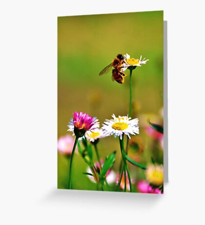 Make honey while the sun shines Greeting Card