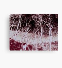 Scary Forest  Canvas Print