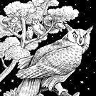 The Night Owl by Stephanie Smith