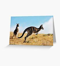 Two Kangaroos Greeting Card