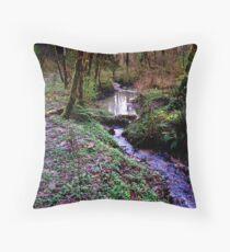 Tryon Creek Throw Pillow