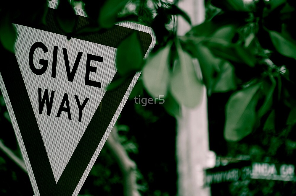 Give Way...Or Not by tiger5