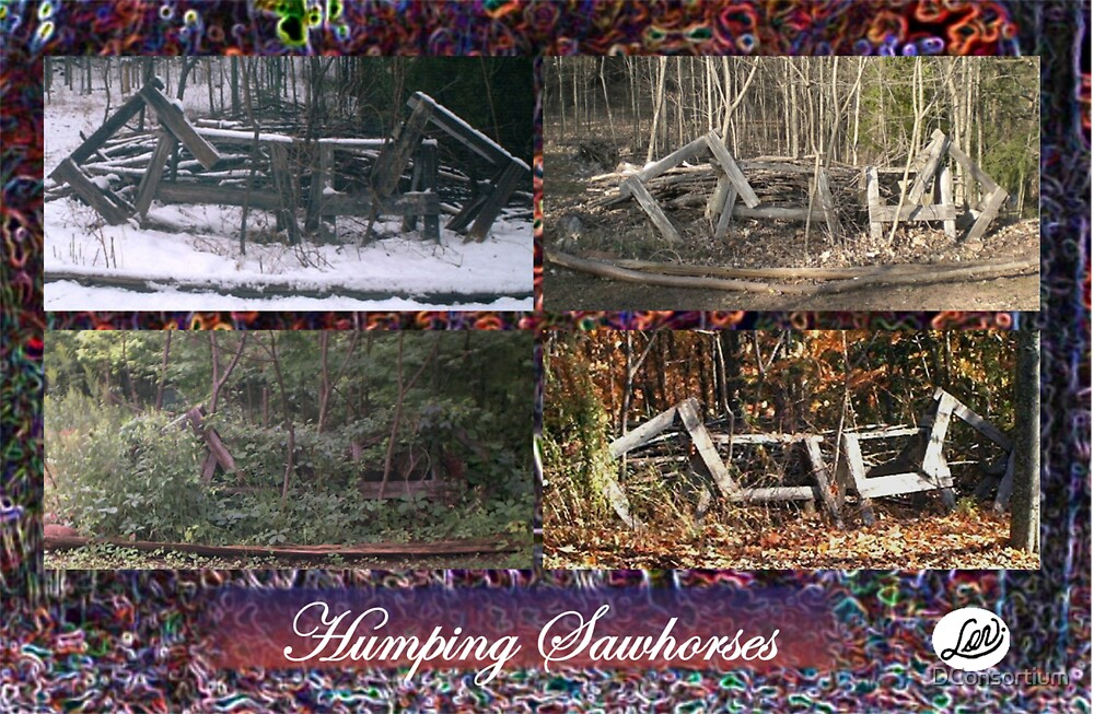 The Four Seasons of The Humping Sawhorses by DConsortium