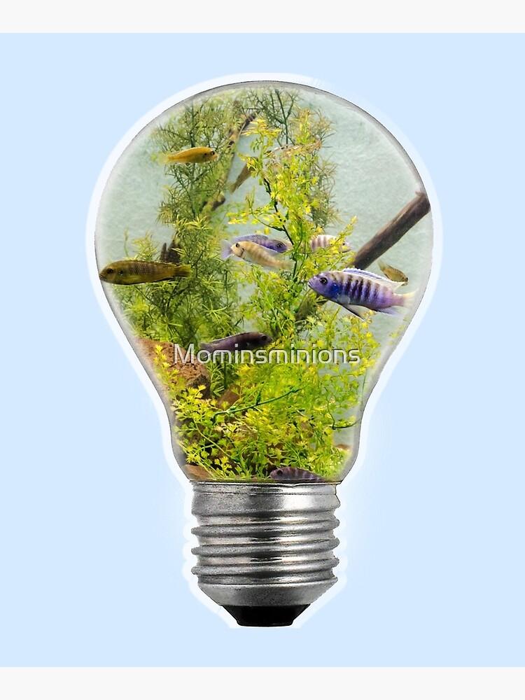 AQUARIUM LAMP by Mominsminions