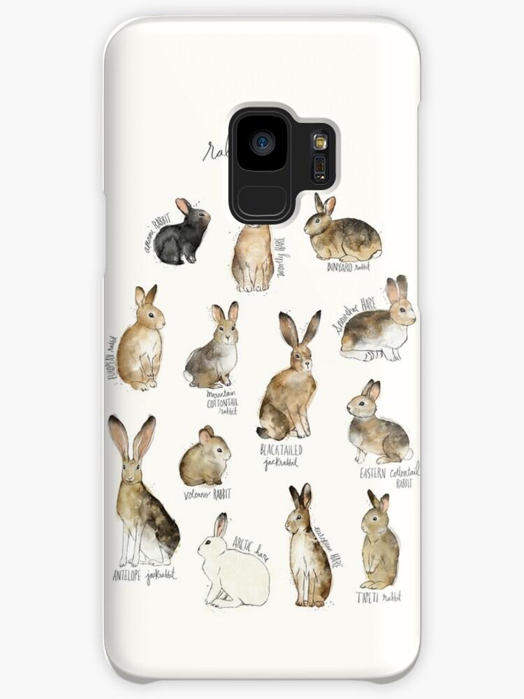 Rabbits & Hares by Amy Hamilton