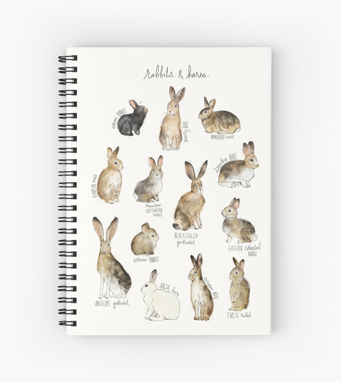 «Conejos y liebres» de Amy Hamilton