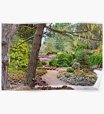 Returning Spring at VanDusen Botanical Garden Poster