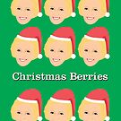 Mary Berry Christmas Card by gregs-celeb-art
