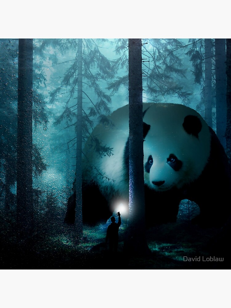 Giant Panda in a Forest by DavidLoblaw