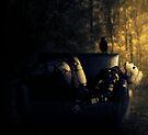 Darkness is my prison. by Matteo Pontonutti