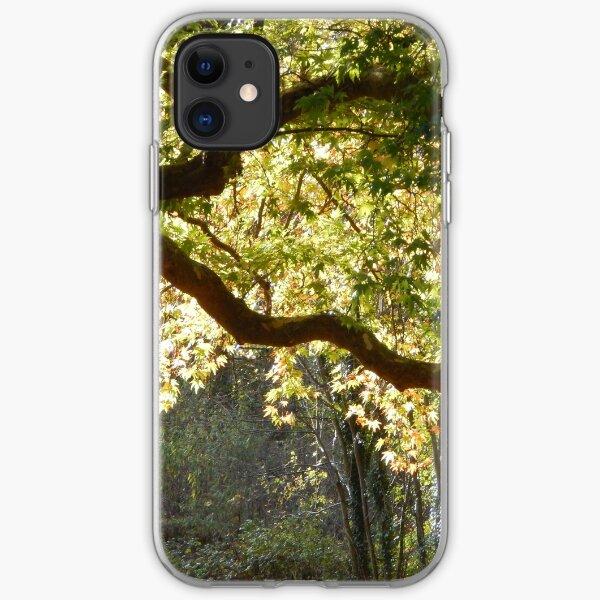In a Sunlit Woods iPhone Soft Case
