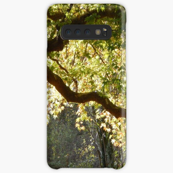 In a Sunlit Woods Samsung Galaxy Snap Case