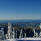 Metro Vancouver Viewed from Mount Seymour by Michael Garson