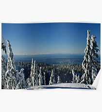 Metro Vancouver Viewed from Mount Seymour Poster