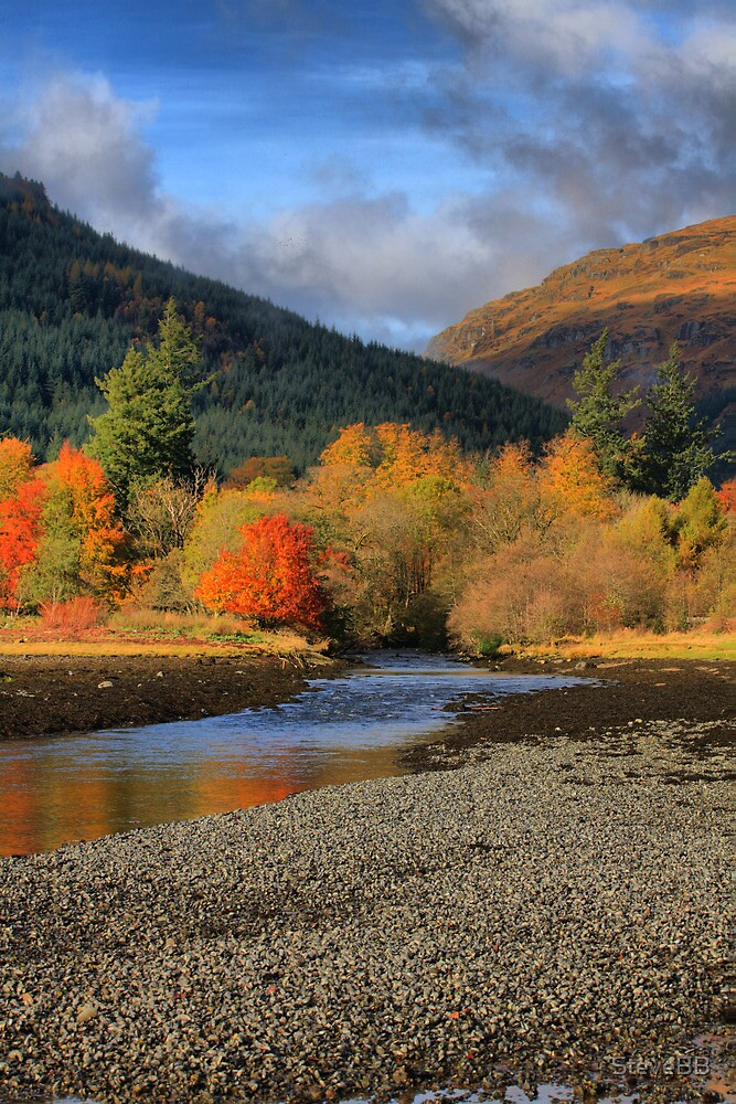 Autumn at Arrochan by SteveBB