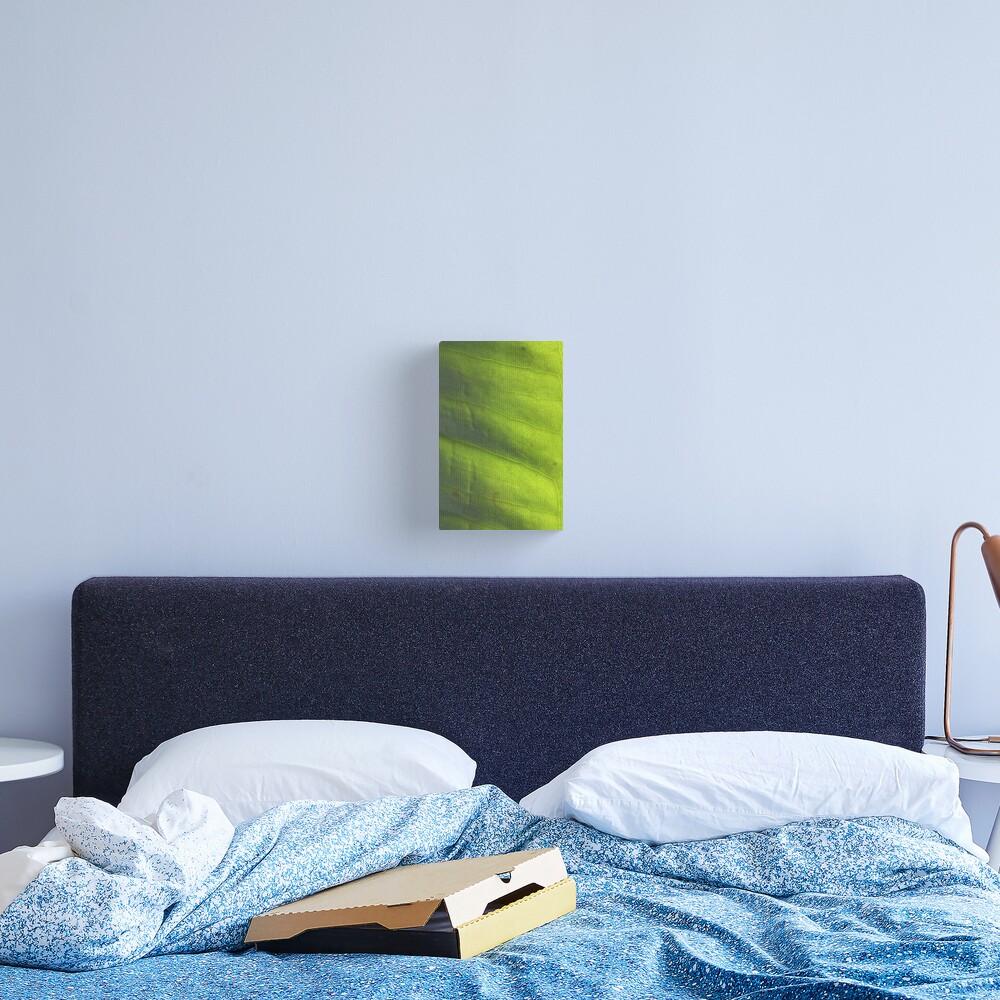 vert' Canvas Print