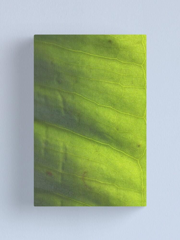 Alternate view of vert' Canvas Print