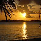 Golden sunset  by Neville Gafen