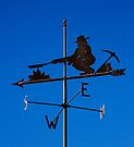 Weathervane by Alex Preiss
