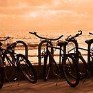 Bicycles by Aurora Vaz