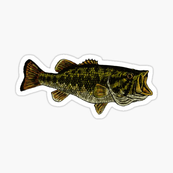 Trout silhouette vinyl decal//sticker fish fishing boat river creek stream