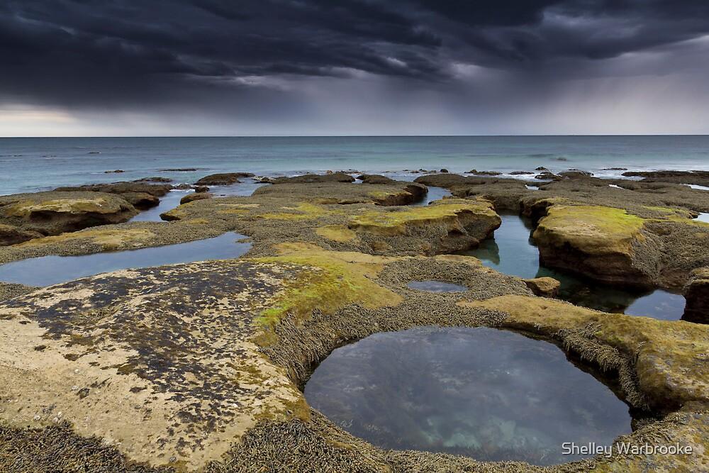 Anglesea, Great Ocean Road, Victoria, Australia by Shelley Warbrooke