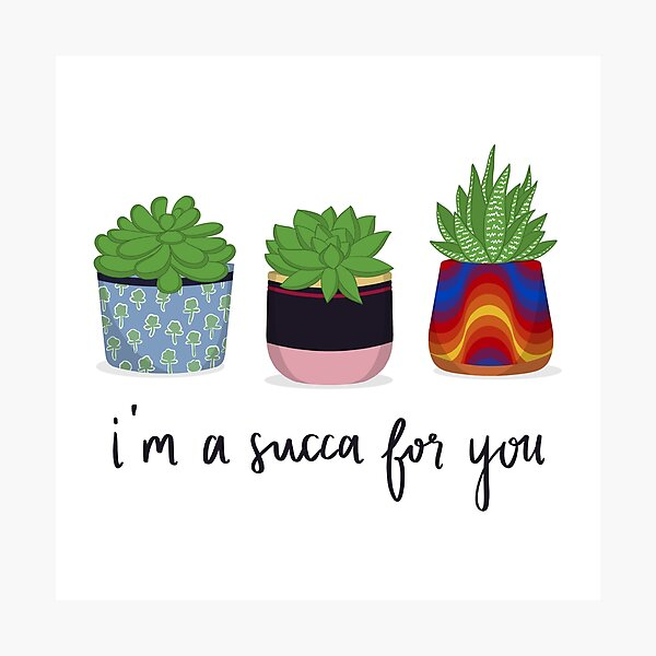 I'm A Succa For You Photographic Print