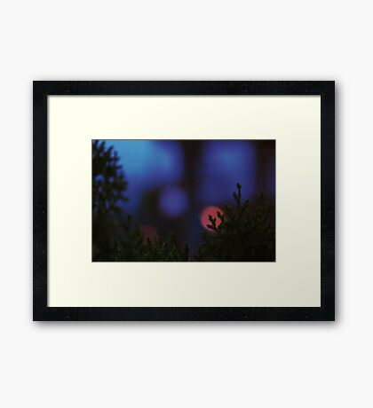 The Rising Christmas Spirit... Framed Print