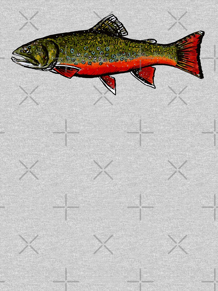Brook Trout by Kathrynshaw