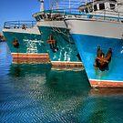 The Fleet by GerryMac