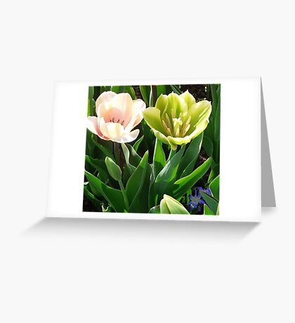 Double Your Pleasure Greeting Card