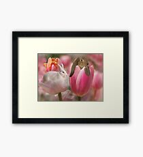 Bunny Blossoms Framed Print
