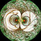 Life Star Escher #2  (UF0202) by barrowda